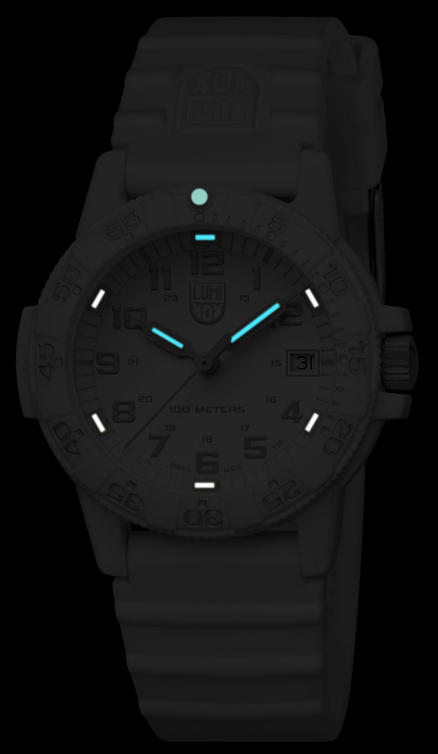 Luminox 0307.WO